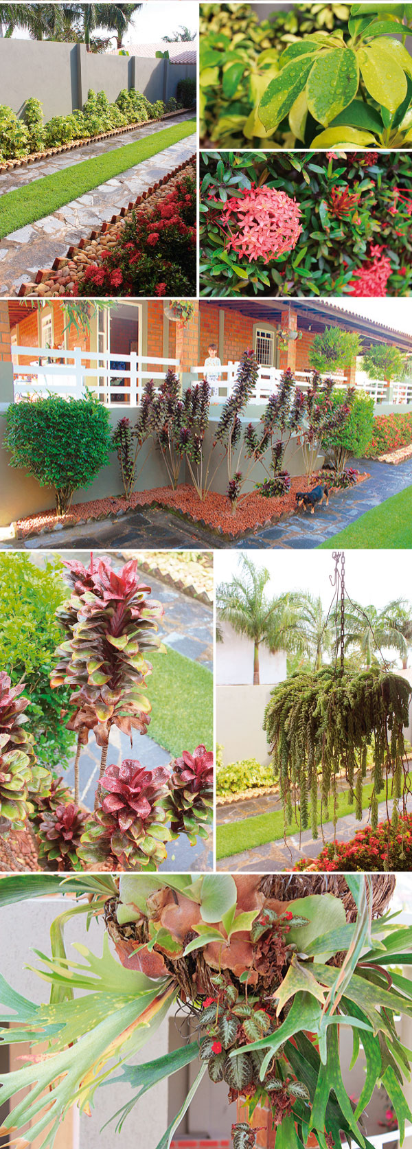 jardim-paisagismo2