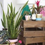 vasos customizados para plantas2