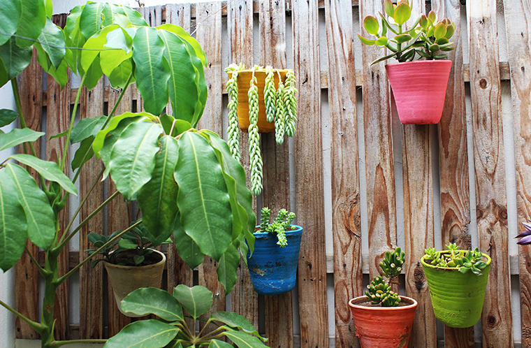 decoração-com-plantas13