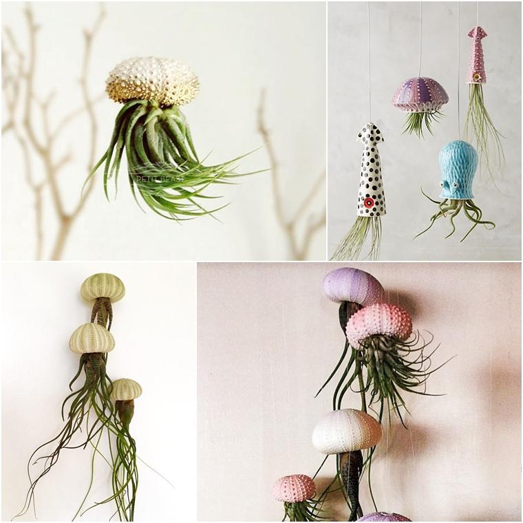 plantas fundo do mar2