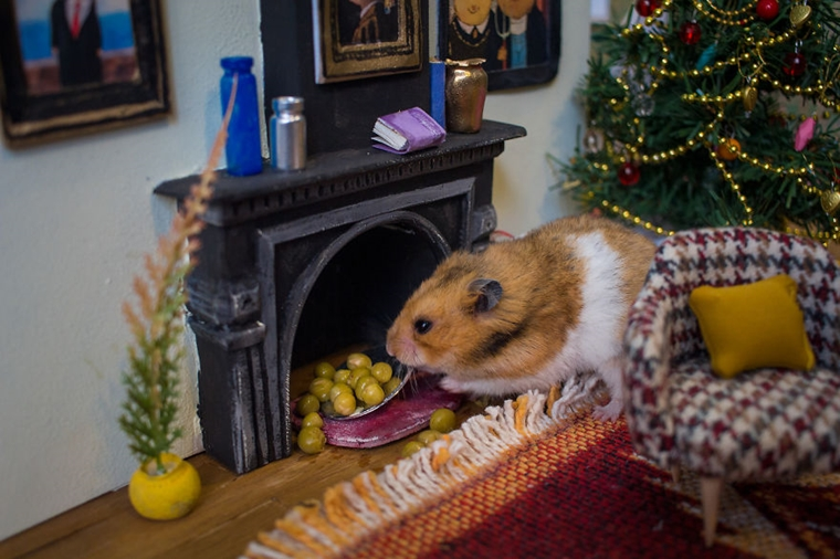 cidade em miniatura de hamster8